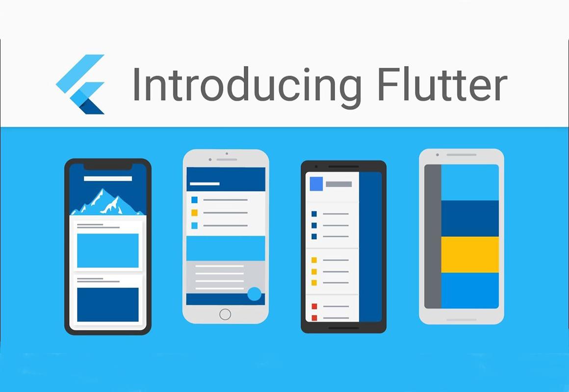 Flutter Developers Survey | Key to Flutter's Success | Flutter App Dev
