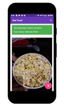 Flutter app which tells you whether photograph contains any food items